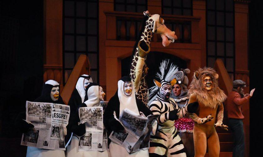 Madagascar el musical en el Lola Membrides